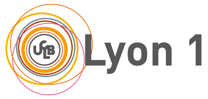 CISR université Lyon1